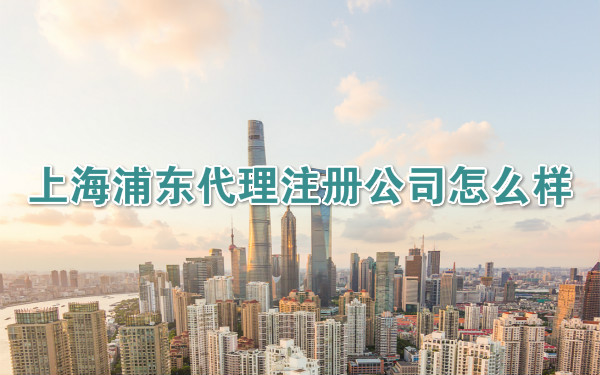 上海浦东代理注册公司怎么样