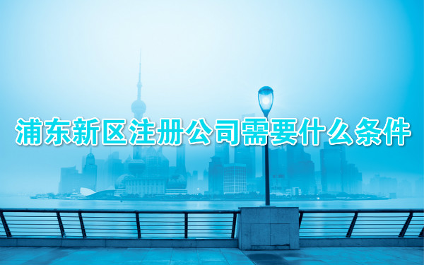 浦东新区注册公司需要什么条件