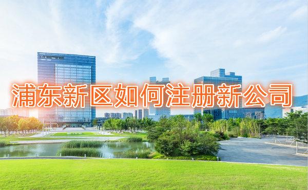 浦东新区如何注册新公司