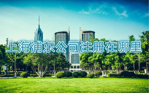 上海浦东公司注册在哪里