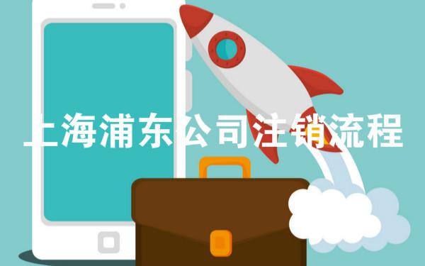 上海浦东公司注销流程