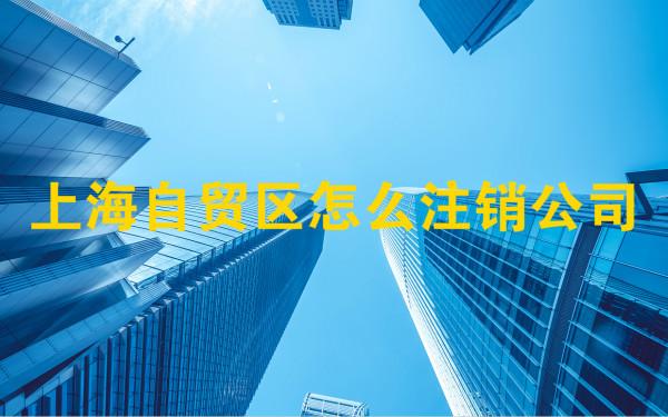 上海自贸区怎么注销公司