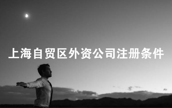 上海自贸区外资公司注册条件