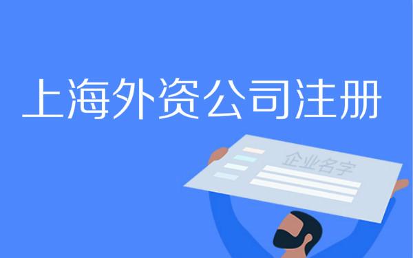 上海外资公司年度报告怎么申报